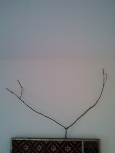 Antler Branch On Wall