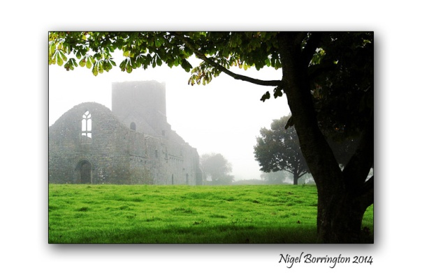 The Morning Foggy Dew Callan, County Kilkenny Irish Landscape Photogaphy : Nigel Borrington
